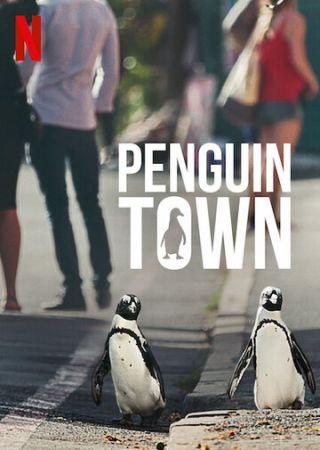 Город пингвинов