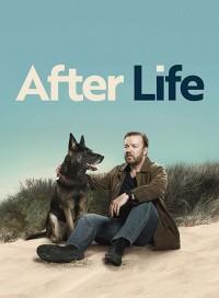 Жизнь после смерти